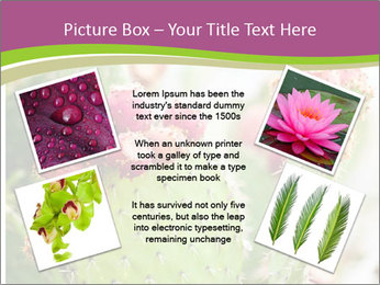 Cactus In Blossom PowerPoint Templates - Slide 24