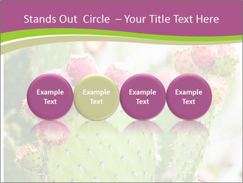 Cactus In Blossom PowerPoint Templates - Slide 76