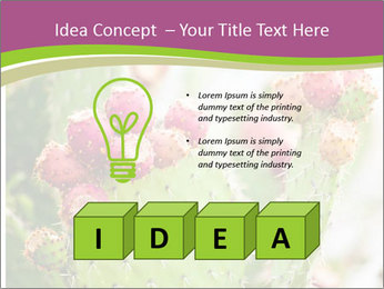 Cactus In Blossom PowerPoint Templates - Slide 80