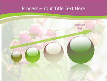 Cactus In Blossom PowerPoint Templates - Slide 87