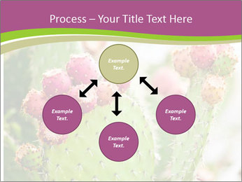 Cactus In Blossom PowerPoint Templates - Slide 91