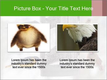 Sparrows During Winter PowerPoint Template - Slide 18