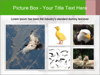 Sparrows During Winter PowerPoint Template - Slide 19