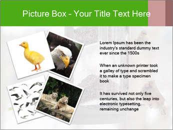 Sparrows During Winter PowerPoint Template - Slide 23