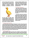 0000088506 Word Template - Page 4