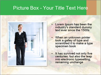 Grilled Sandwich PowerPoint Template - Slide 13