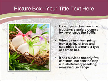 Nest With Blue Eggs PowerPoint Template - Slide 13
