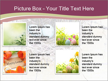 Nest With Blue Eggs PowerPoint Template - Slide 14