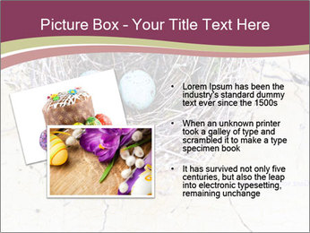 Nest With Blue Eggs PowerPoint Template - Slide 20