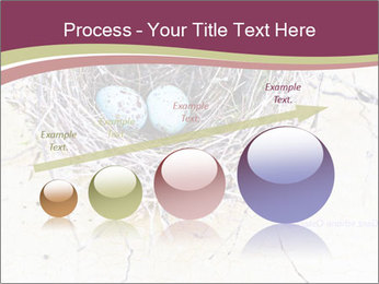 Nest With Blue Eggs PowerPoint Template - Slide 87