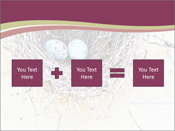 Nest With Blue Eggs PowerPoint Template - Slide 95