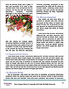 0000088515 Word Template - Page 4
