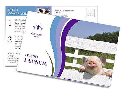 0000088520 Postcard Template
