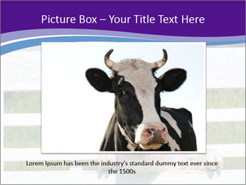 Funny Pink Piggy PowerPoint Template - Slide 15