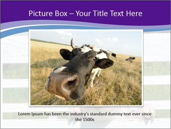 Funny Pink Piggy PowerPoint Template - Slide 16
