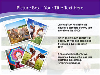 Funny Pink Piggy PowerPoint Template - Slide 23