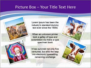 Funny Pink Piggy PowerPoint Template - Slide 24