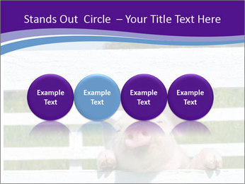 Funny Pink Piggy PowerPoint Template - Slide 76