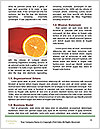 0000088523 Word Templates - Page 4