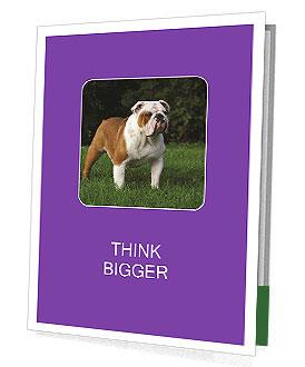 0000088544 Presentation Folder