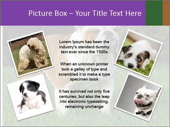English bulldog standing in the grass PowerPoint Template - Slide 24