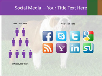 English bulldog standing in the grass PowerPoint Template - Slide 5
