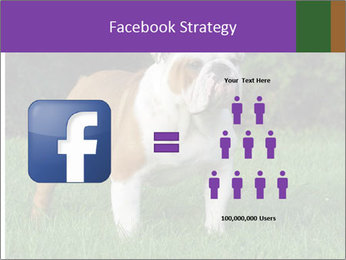 English bulldog standing in the grass PowerPoint Template - Slide 7