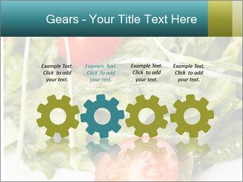 Summer salad PowerPoint Templates - Slide 48