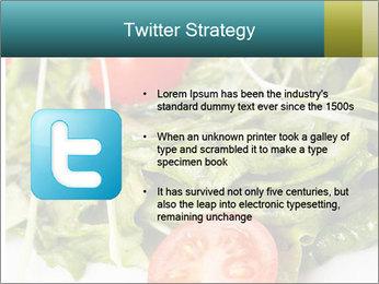 Summer salad PowerPoint Templates - Slide 9