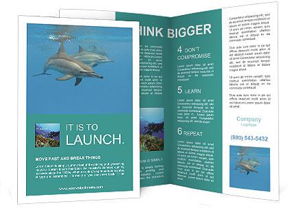 0000088555 Brochure Template