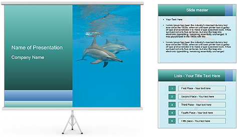 Schooling Spinner dolphins Red Sea, Egypt PowerPoint Template