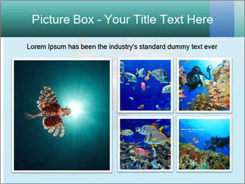 Schooling Spinner dolphins Red Sea, Egypt PowerPoint Template - Slide 19