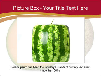 Orange cantaloupe melon isolated PowerPoint Template - Slide 16