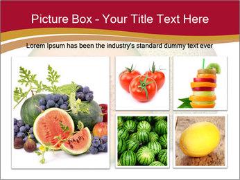 Orange cantaloupe melon isolated PowerPoint Templates - Slide 19