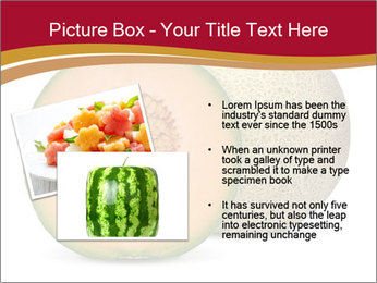 Orange cantaloupe melon isolated PowerPoint Template - Slide 20