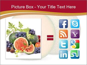 Orange cantaloupe melon isolated PowerPoint Templates - Slide 21