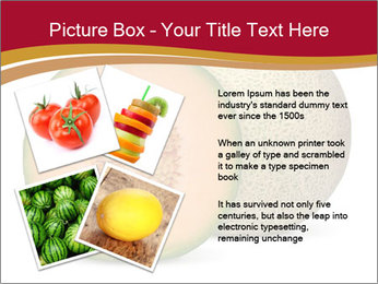 Orange cantaloupe melon isolated PowerPoint Templates - Slide 23