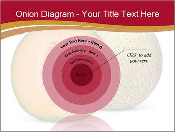 Orange cantaloupe melon isolated PowerPoint Template - Slide 61