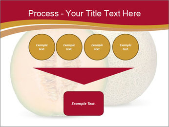 Orange cantaloupe melon isolated PowerPoint Template - Slide 93
