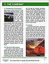 0000088561 Word Template - Page 3