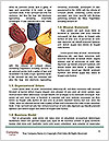 0000088564 Word Templates - Page 4