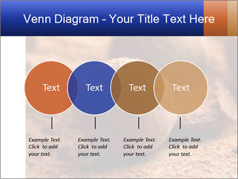 Chocolate truffle PowerPoint Template - Slide 32