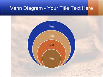 Chocolate truffle PowerPoint Template - Slide 34