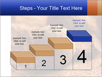 Chocolate truffle PowerPoint Template - Slide 64