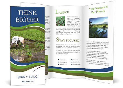0000088571 Brochure Template