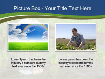Rice Planting PowerPoint Templates - Slide 18