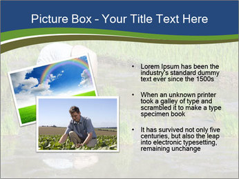 Rice Planting PowerPoint Templates - Slide 20