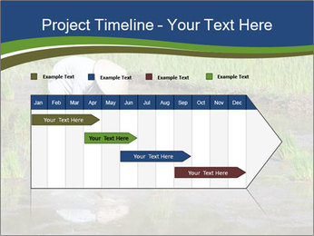Rice Planting PowerPoint Templates - Slide 25