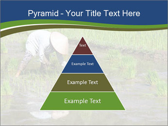Rice Planting PowerPoint Templates - Slide 30
