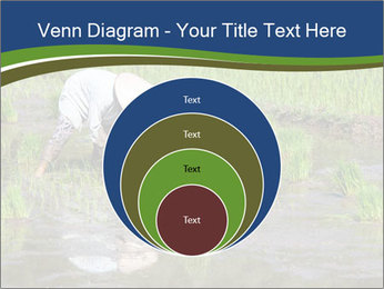 Rice Planting PowerPoint Templates - Slide 34